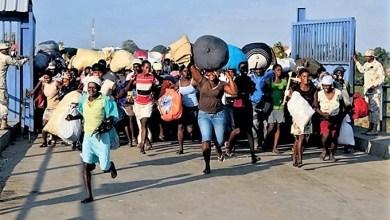 Photo of Casi 74 mil haitianos regresaron de la República Dominicana en septiembre
