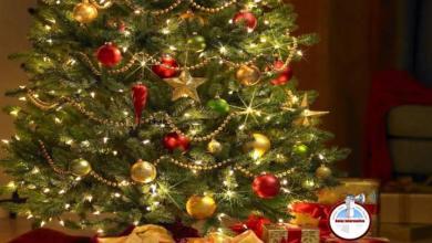Photo of Recomendaciones para evitar accidentes con el árbol de Navidad