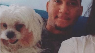 Photo of Juez conocerá caso muerte de un perro por negligencia médica en cirugía al can