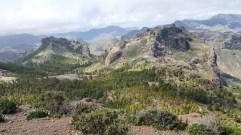 Utsikt från Roque Nublo