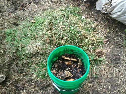 Alt Bokashi Bucket Burying (1/4)
