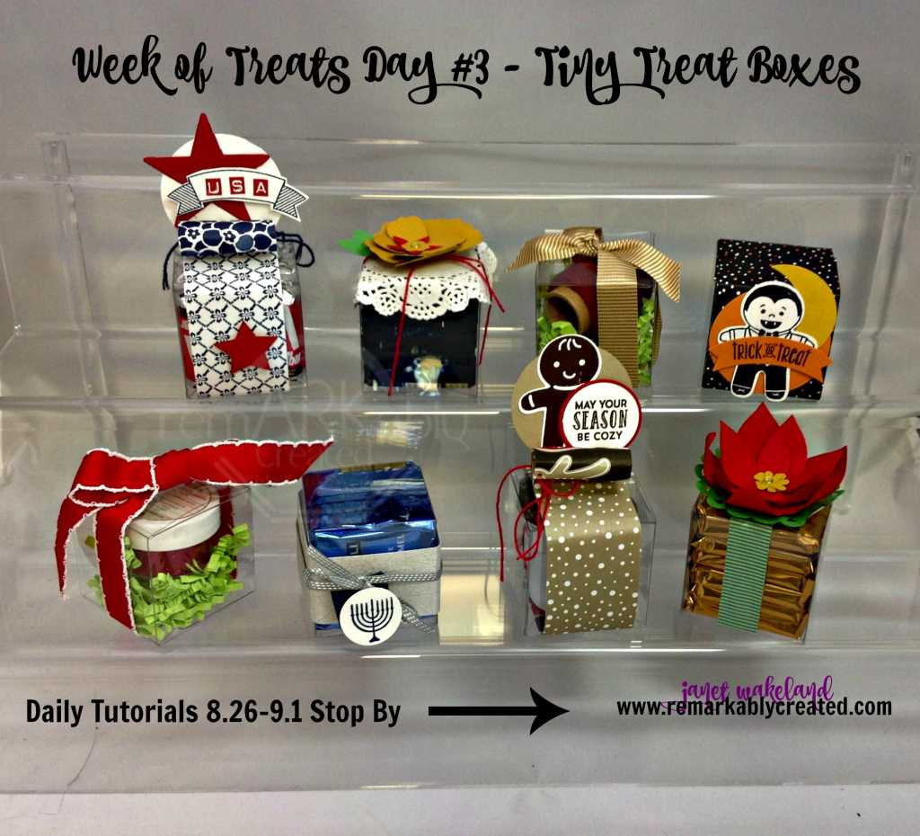 Week Of Treats Day 3 Stampin UP Clear Tiny Treat