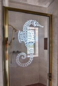 #358 CP SHOWER DOOR