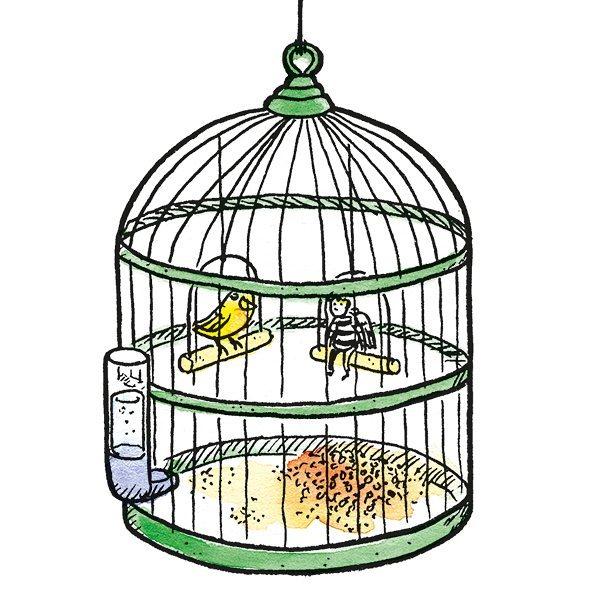 #19 – Birdcage