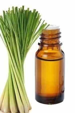 Lemongrass Essential Oils For Ingrown Hair