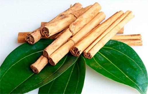 Para qué sirve la canela con las hojas de laurel