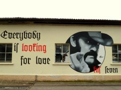Aarau. Are you looting for love?