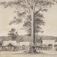 Life at the Diggings - Letters from McIvor Diggings, Victoria, 1 July 1853 and Bendigo, 25 July 1853