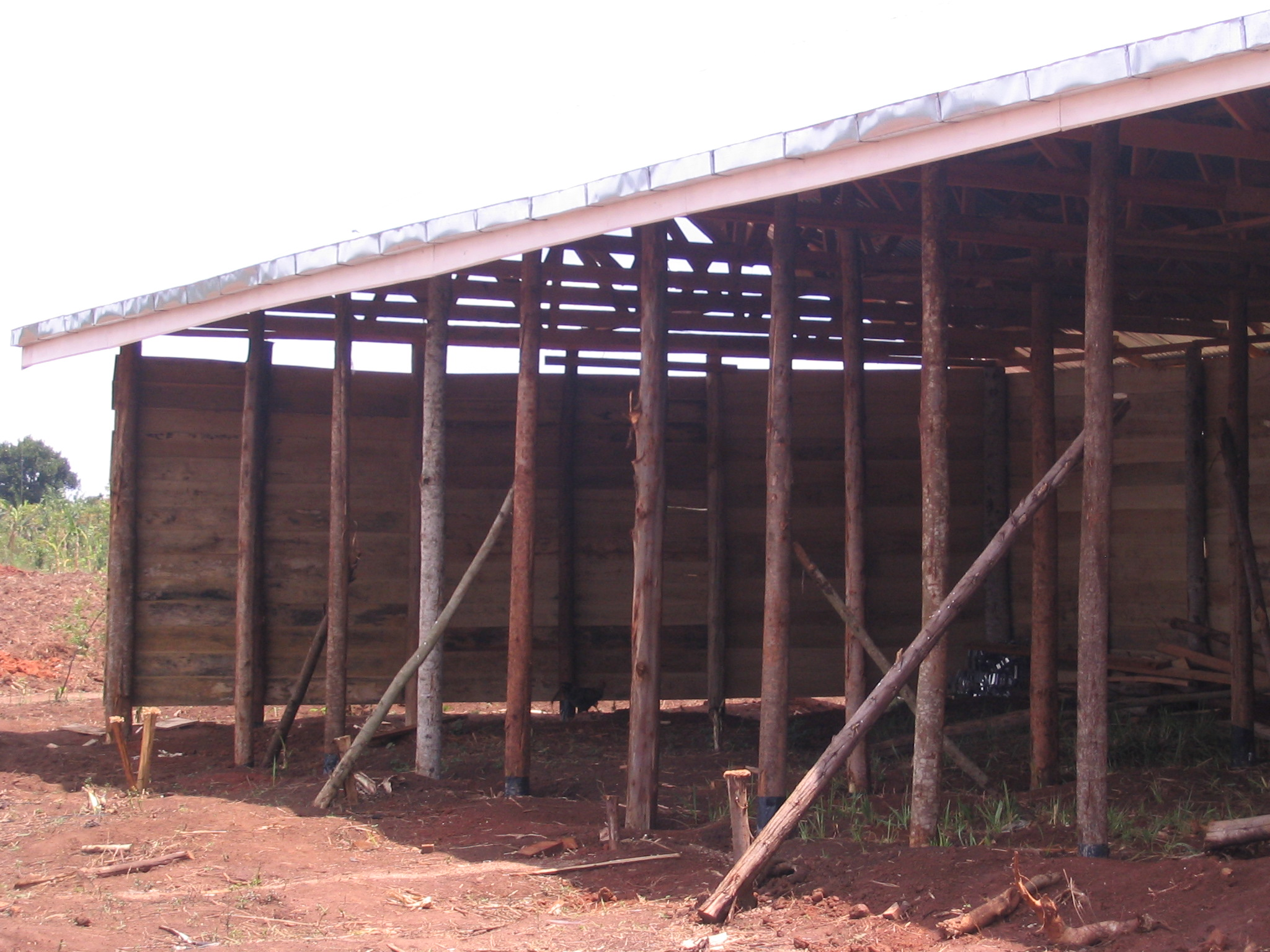 Roofing going on the stables at the gold mine