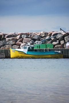 White Point - Cape Breton - Nova Scotia