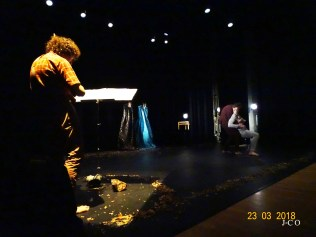 Spectacle JMF (12)