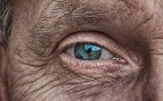 ojos que hablan