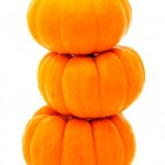 10 No-Carve Pumpkin Ideas via Tipsaholic.com