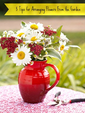 5 Tips for Arranging Flowers from the Garden @Tipsaholic