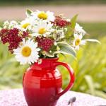 arranging garden flowers