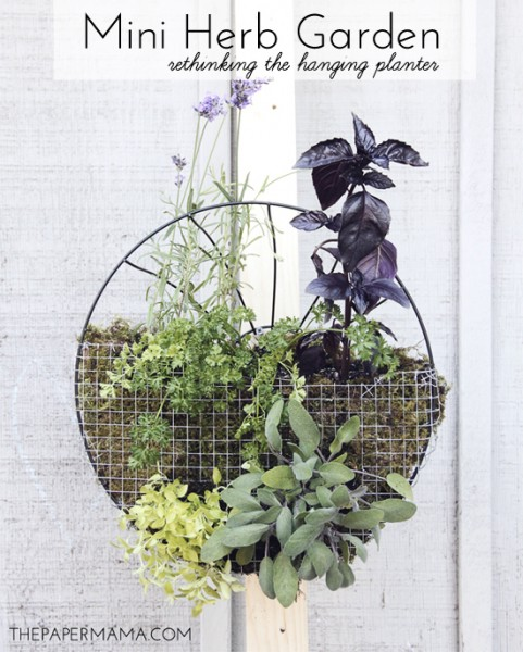 24 Indoor Herb Garden Ideas To Look For Inspiration: 25 Fantastic Indoor Herb Garden Ideas