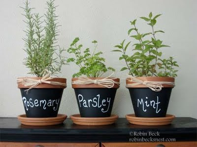25 Fantastic Indoor Herb Garden Ideas - Tipsaholic