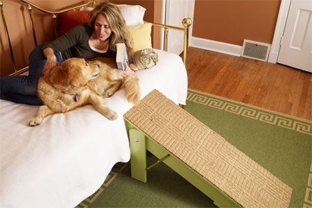Remodelaholic 14 Diy Projects For Dog Owners
