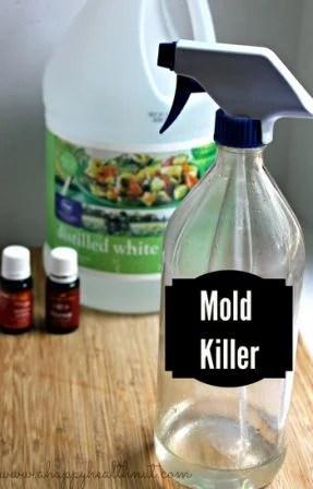 mold-killer