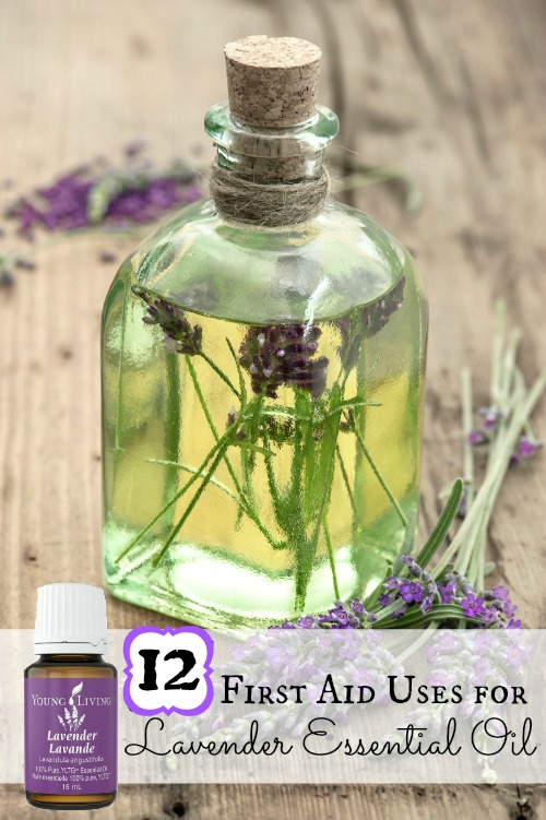 Lavender essential oil is a great addition to your first aid kit! Here are 12 uses for lavender essential oil to treat scrapes, cuts, burns, and more. 12 First Aid Uses for Lavender Essential Oil via @tipsaholic #oils #lavender #essentialoils #youngliving #lavenderoil #firstaid