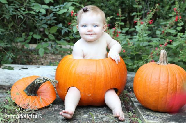 Baby in a pumpkin 1