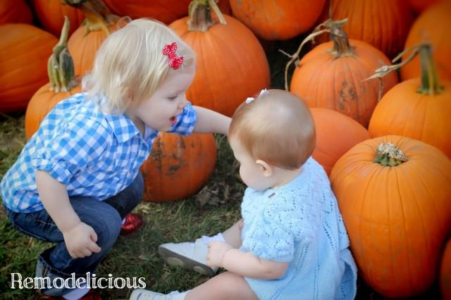 PumpkinPatch2012 565
