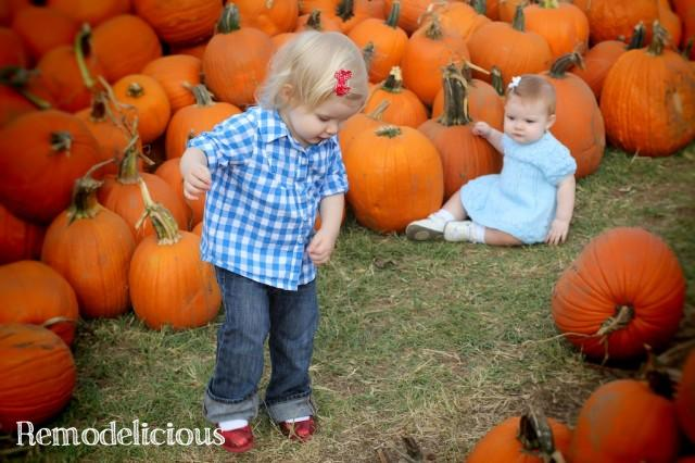 PumpkinPatch2012 567