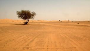 131028192144 sahara desert 304x171 t nocredit Hallan 87 migrantes que murieron de sed en el Sahara