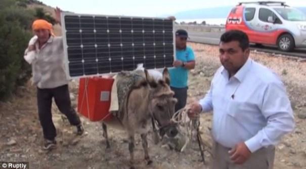 image144 Agricultores turcos cargan laptops con BURROS con energía solar