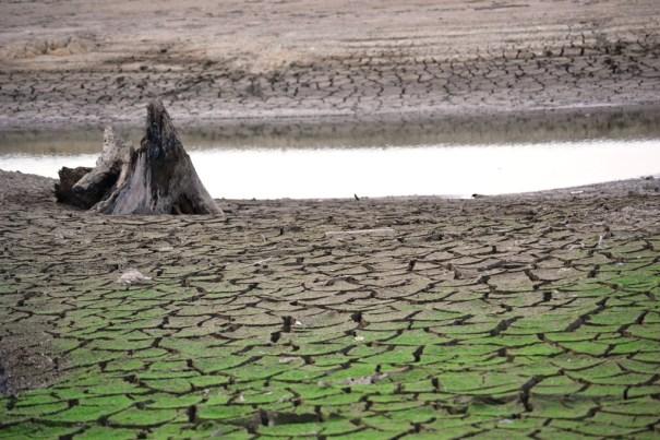 Impactante sequia en la presa de Hatillo  (14)