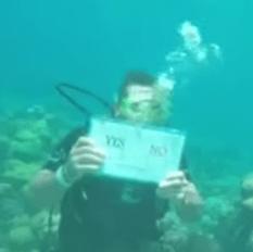 boda Video   Propuesta de matrimonio debajo del agua en Isla Catalina