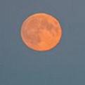 superlunita Fotos   Eclipse de superluna