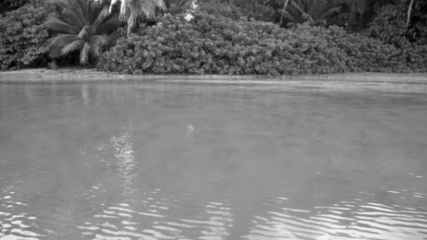 la isla donde la gente ve en blanco y negro La isla donde la gente ve en blanco y negro