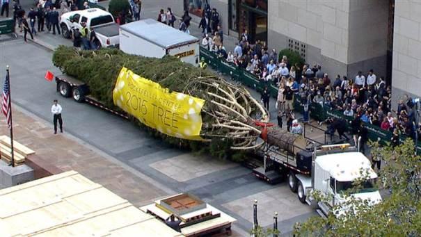 arbolito El nuevo mega arbolito de Rockefeller Center