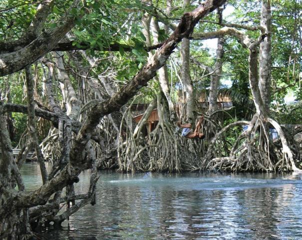 laguna grigri Rincones de Quisqueya: Lagos, ríos y saltos