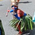 rr Fecha pal Desfile Nacional de Carnaval Santo Domingo 2016