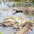 yaue Coordinan acciones para rescatar río Yaque del Norte