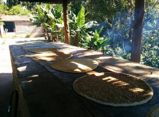 dajabon fabrica casabe Rincones de Quisqueya: Dajabón