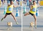Perro en maraton