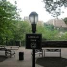 parke Violan dominicana en un parque del Alto Manhattan