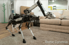 Robot-Perro