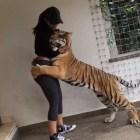 jeva La ex jeva dominicana de Bieber retozando con un tigre