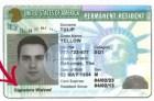 card Cómo aprovechar nuevo perdón migratorio en USA
