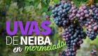 uvas-de-neiba-en-mermelada