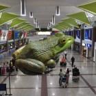 maco aeropuerto Retrasos por maco informático en el AILA