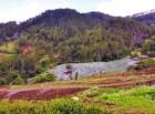 valle nuevo1 La propuesta pa reubicar productores de Valle Nuevo