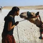 ella Dominicana en Egipto. Historia de taxista ratrero