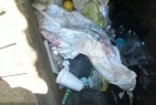 puerto plata1 Hallan feto dentro de basura en Puerto Plata