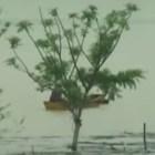 agua Más de 10,000 personas desplazadas por lluvias