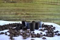 Un lote de cacao criollo - Fotos por Timoteo Estevez - www.remolacha.net